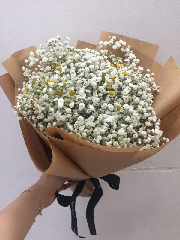 Hoa cúc tana và bayby trắng